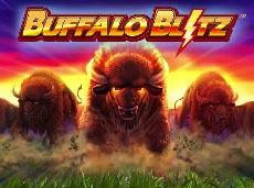 بوفالو بليتز (Buffalo Blitz)