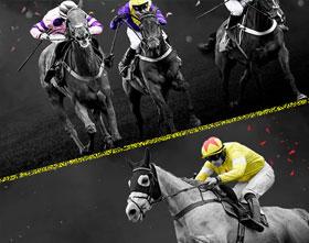 أرشيف سباقات الخيول