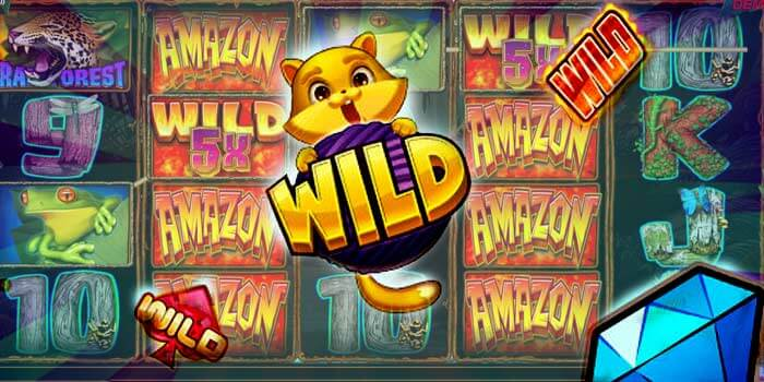 What are Wild Symbols in Online slot